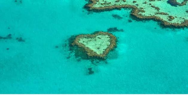 coral reef Australia