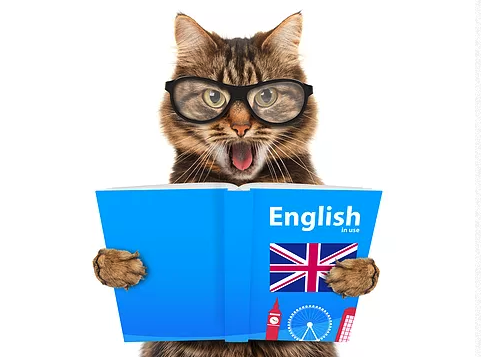 Pacific English Study - Home | Facebook